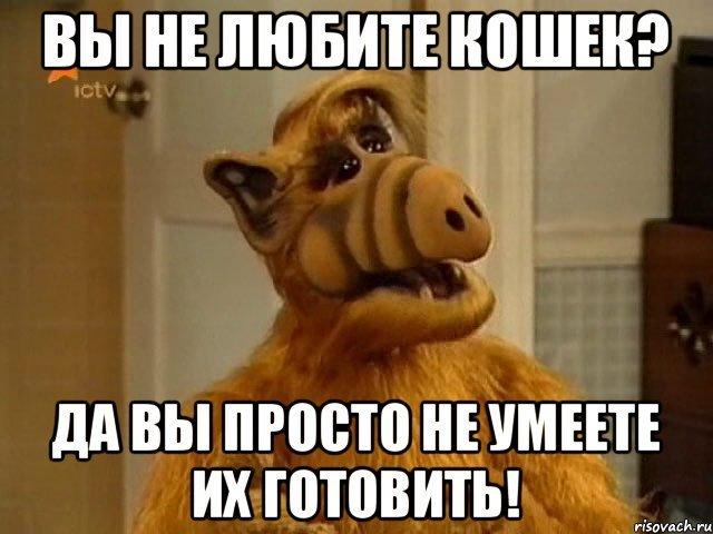 мем Альф