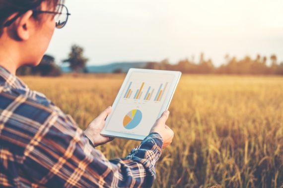 Маркетинг и продвижение для сельского хозяйства: как привлечь клиентов и повысить прибыль?