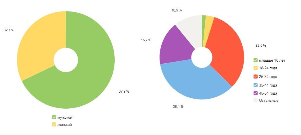 скриншот, пол и возраст аудитории гигант строй